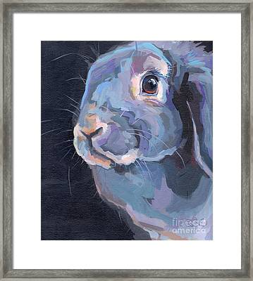 Easter Lop Framed Print by Kimberly Santini