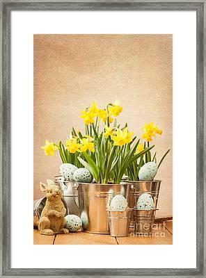 Easter Setting Framed Print by Amanda Elwell