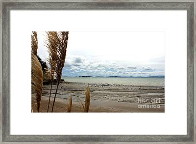 Eastern Beach Before Cyclone Lusi Framed Print