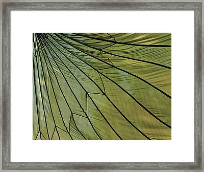 Easy- Breezy- Parachute Framed Print