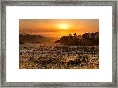 Easy Living - Russian Ridge California Framed Print by Matt Tilghman