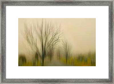 Easy On Me Framed Print by Diana Angstadt