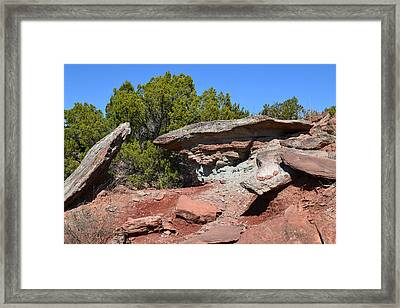 Easy Pass Framed Print