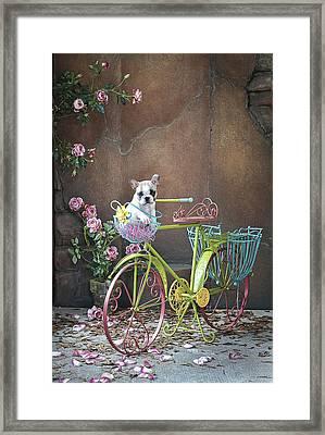 Easy Rider Framed Print