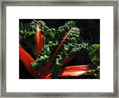 Eat Me Framed Print