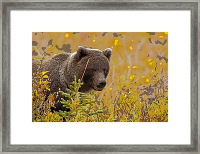 Eating In The Beauty Of Autumn- Abstract Framed Print by Tim Grams