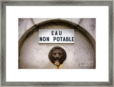 Eau Non Potable Framed Print by Olivier Le Queinec