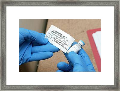 Ebola Vaccine Framed Print by Rob Judges/oxford University Images
