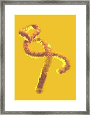 Ebola Virus Framed Print by Victor Habbick Visions