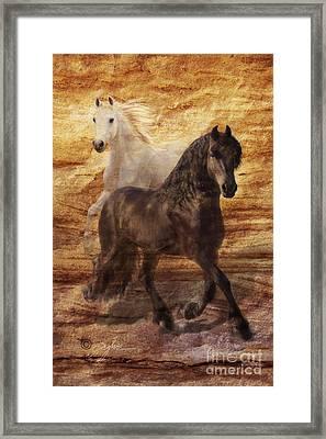 Ebony And Ivory Framed Print by Melinda Hughes-Berland