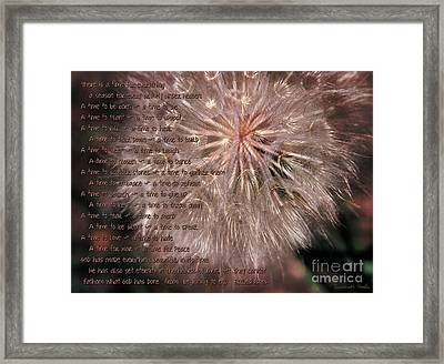 Ecclesiastes Seasons Framed Print by Constance Woods