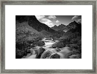 Echo Framed Print by Ed Boudreau