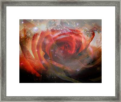 Echoes Of The Rose Framed Print by Judy Paleologos