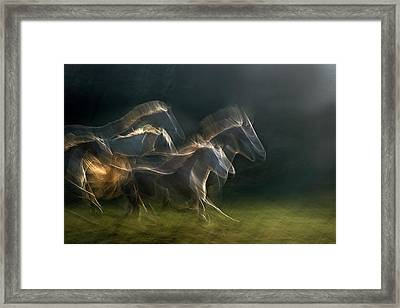 Echoing In Motion Framed Print