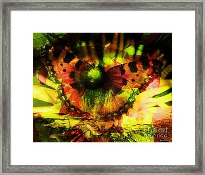 Eco-eye Framed Print