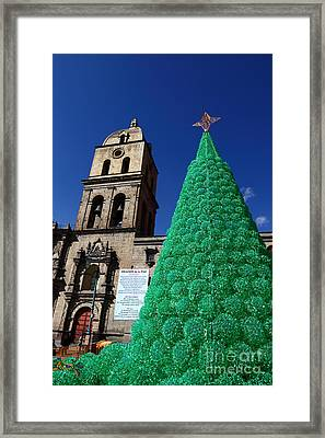 Ecological Christmas Tree Framed Print by James Brunker