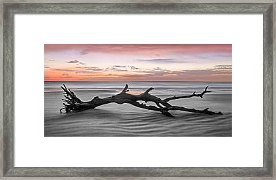 Ecstacy 2 Framed Print by Debra and Dave Vanderlaan