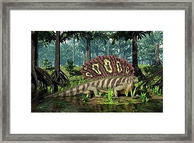 Edaphosaurus Amidst Cordaites Framed Print
