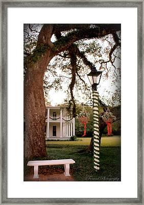 Eden State Park Framed Print by Debra Forand