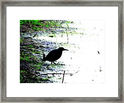 Edgar Allan Poe's Raven On The Edge Of Oblivion By Ron Tackett Framed Print