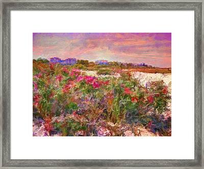 Edgartown Shoreline Roses - Horizontal  Framed Print