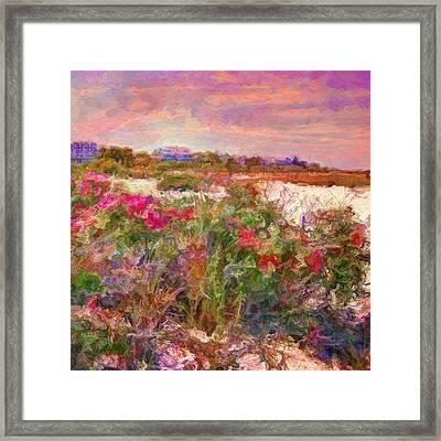 Edgartown Shoreline Roses - Square Framed Print