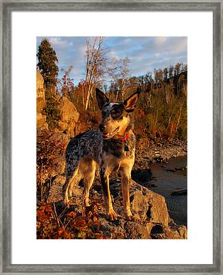 Framed Print featuring the photograph Edge Of Glory by James Peterson