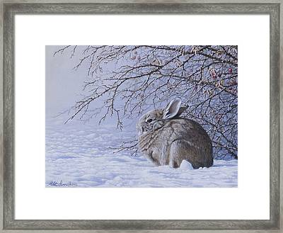 Edge Of The Briars Framed Print