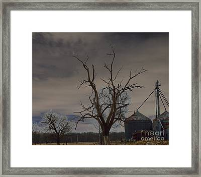 Edge Of The Storm Framed Print by Alys Caviness-Gober