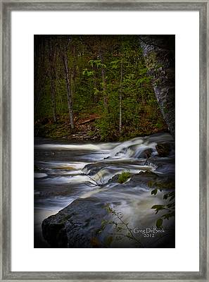Edge Of The Stream Framed Print