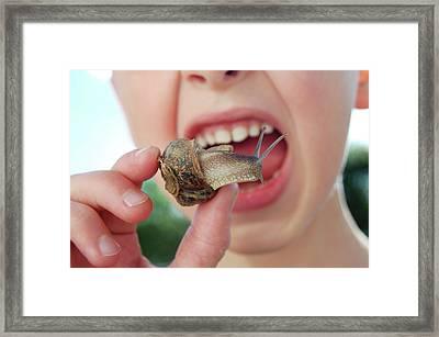 Edible Snail Framed Print