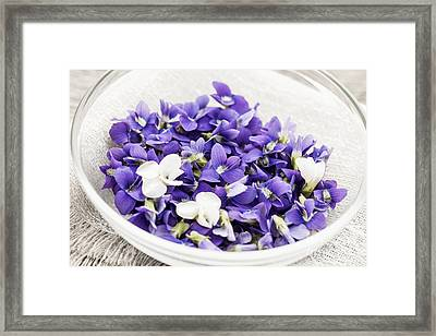 Edible Violets In Bowl Framed Print by Elena Elisseeva