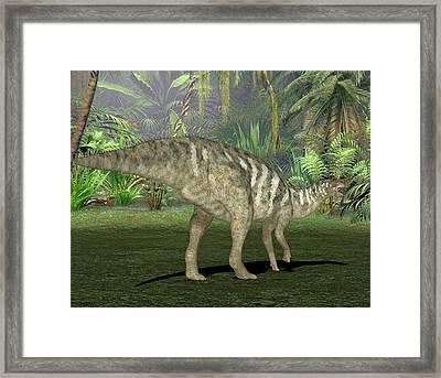 Edmontosaurus Dinosaur Framed Print by Friedrich Saurer