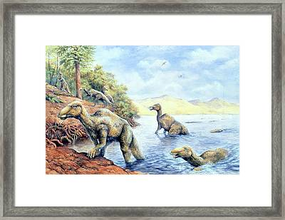 Edmontosaurus Dinosaurs Framed Print