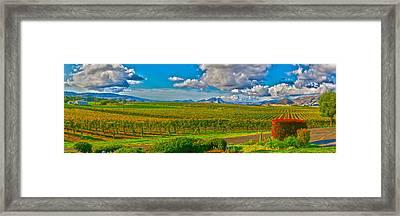 Edna Wineries Ca Framed Print