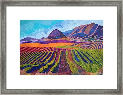 Edna's Morro Islay Hill Framed Print