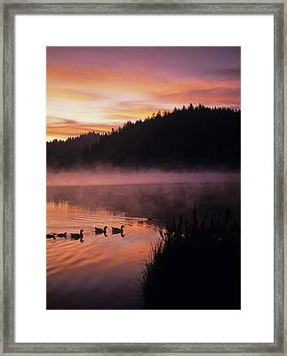 Eel Lake Reflects The Dawn Sky Framed Print by Robert L. Potts