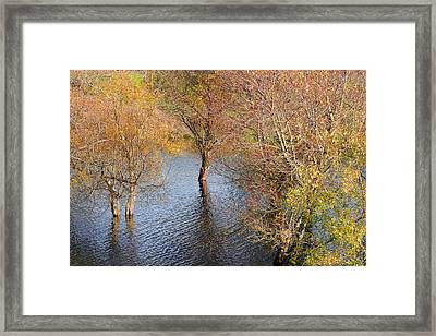 Eel River Deux Framed Print