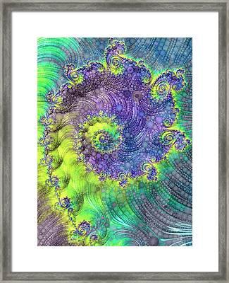 Effervescence Framed Print by Susan Maxwell Schmidt