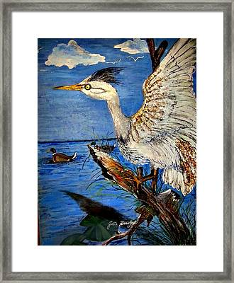 Egert Lands Framed Print