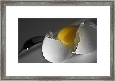 Egg Framed Print by Ioana Todor
