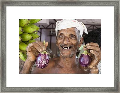 Eggplant Framed Print by Sonny Marcyan
