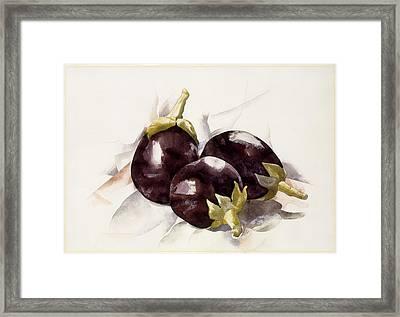 Eggplants Framed Print by Charles Demuth