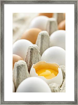 Eggs In Box Framed Print by Elena Elisseeva