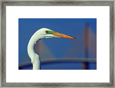 Framed Print featuring the photograph Egret And Skyway II by Daniel Woodrum