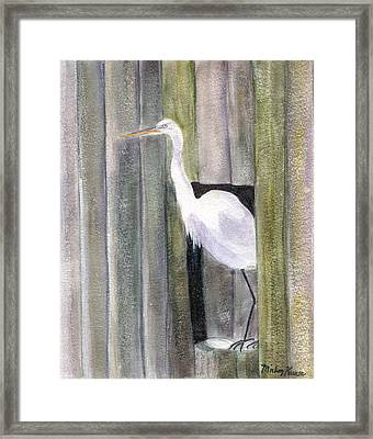 Egret At John's Pass Framed Print by Mickey Krause