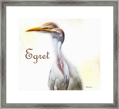 Egret Framed Print by Barbara Chichester