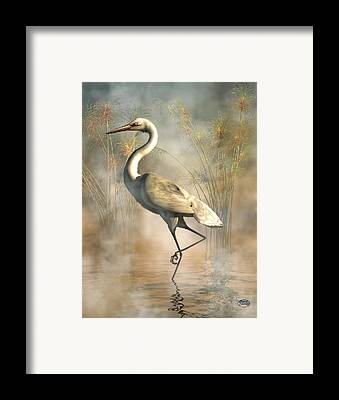 Stork Framed Prints