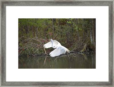 Over The Lagoon Framed Print