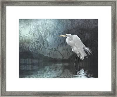 Egret In Moonlight Framed Print